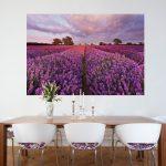 Eleganz und Romantik versprühen die Lavendelfelder aus der Provence