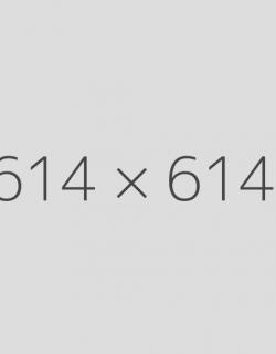 614x614