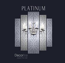 PLATINUM COVER FINAL
