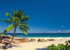 Fototapete 'Seychellen' von Komar. Palmenstrand Größe 388 x 270 cm.