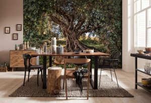 8-531_olive_tree_interieura