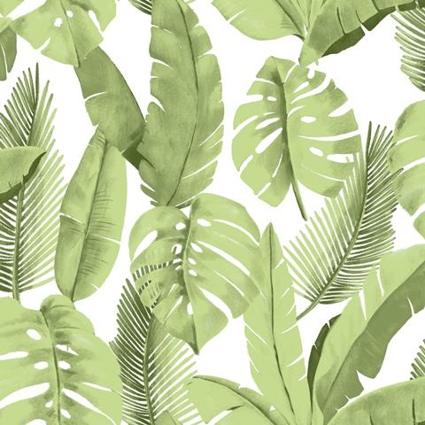 Papel de Parede Folhas Verde 3702
