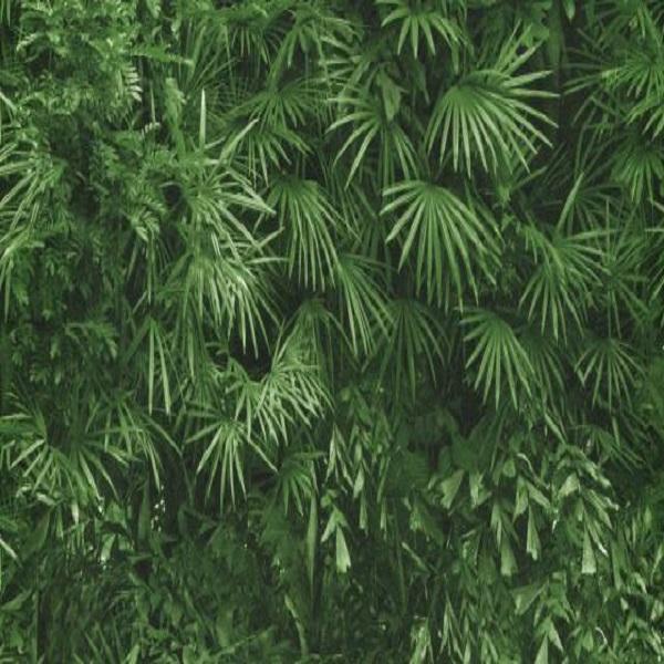 Papel de parede floresta 6374-07